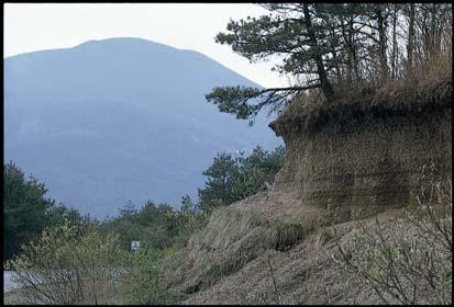 山 噴火 生き埋め 浅間